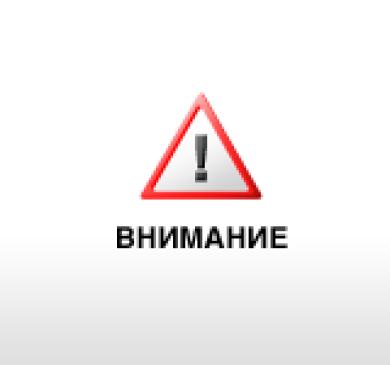 Собаки бесплатные объявления красноярск